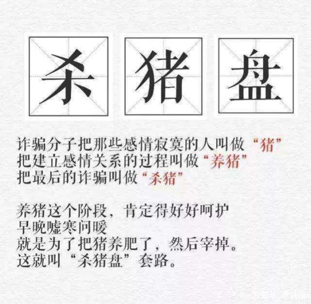 """""""杀猪盘""""新人培训手册"""